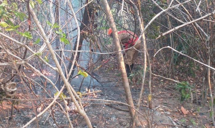 Incêndio na Chapada dos Veadeiros é extinto após cerca de duas semanas