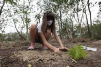 Crianças realizam financiamento coletivo e conseguem restaurar área de Mata Atlântica