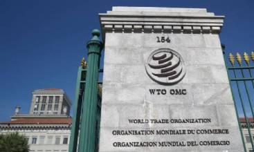OMC não define chefe interino antes de escolher novo diretor-geral