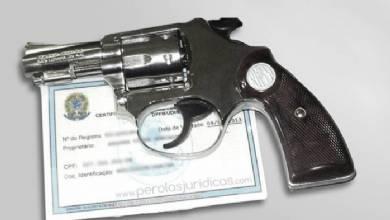 Registros de armas de fogo dobram e índices de violência caem