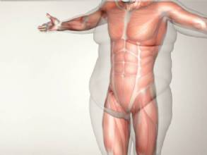 Cirurgia bariátrica: Conheça os principais mitos e verdades sobre o procedimento