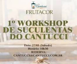 1º Workshop de Suculentas no Cantucci