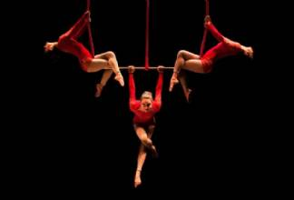 AURORA - Gran Cirque Mirabolantes